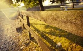 Картинка лето, трава, солнце, свет, деревья, природа, камни, доски, забор, ограда
