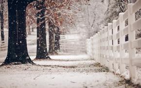 Картинка зима, улица, забор