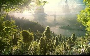 Картинка трава, дымка, строения