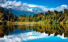 Картинка осень, лес, горы, озеро, Новая Зеландия