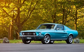 Картинка Mustang, Ford, 1967, Fastback