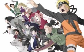 Картинка naruto, anime, sakura, guys