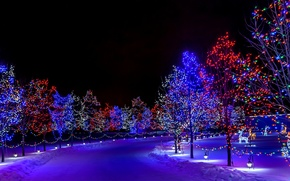 Обои зима, снег, украшения, деревья, ночь, lights, огни, праздник, улица, рождество, Happy New Year, trees, nature, ...
