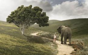 Картинка дорога, слон, девочка