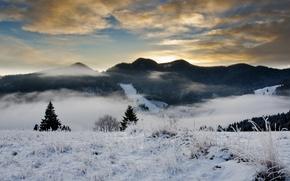 Картинка иней, лес, небо, облака, снег, деревья, холмы, елки, Зима, вечер, дымка