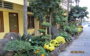Картинка сад, восток, улочка