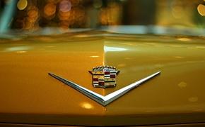 Обои машина, макро, ночь, значок, эмблема, желтая, кадилак, боке
