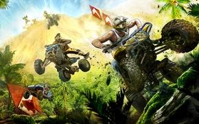 Картинка лес, гонка, спорт, квадроцикл, Mad Riders