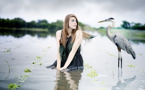 Картинка вода, девушка, птица
