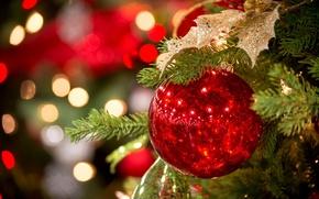 Картинка красный, игрушка, Новый Год, ель, праздники, зима, ёлка, шарик, елочная, огни, боке, New Year, Christmas, ...