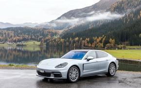 Картинка Горы, Porsche, Panamera, Серебристый, 2016, Металлик, 4S, (973)