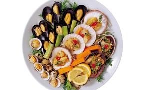 Картинка фото, Лимон, Лайм, Еда, Морепродукты