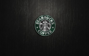 Обои green, logo, cartel starbucks
