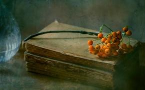Картинка капли, книга, рябина, August rains