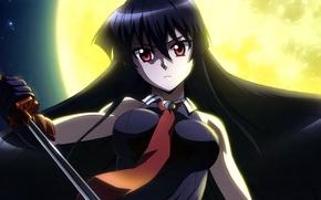 Картинка девушка, катана, Akame, Akame ga kill, убийца Акаме, night raid