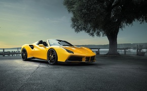 Картинка car, авто, дерево, Ferrari, yellow, wallpapers, tree, Spider, Rosso, Novitec, 488