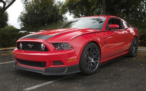 Картинка Mustang, Ford, Red, RTR