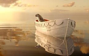 Картинка взгляд, отражение, кино, фильм, море, волны, вода, океан, Жизнь Пи, Life of Pi, горизонт, драма, ...