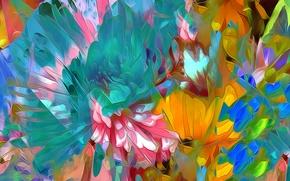 Картинка линии, цветы, природа, краски