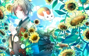 Картинка Цветы, арт, парень, Natsume Yuujinchou, Нацуме, Мияко сенсей