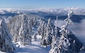Картинка горы Норт-Шор, North Shore Mountains, Howe Sound, пролив Хау, Vancouver, горы, зима, British Columbia, Канада, ...
