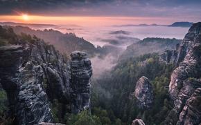 Картинка лес, горы, туман, восход, скалы, утро