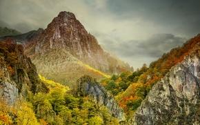 Картинка осень, небо, облака, деревья, горы, туман
