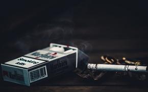 Картинка макро, сигареты, Smoking kills