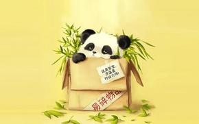 Картинка бамбук, панда, посылка
