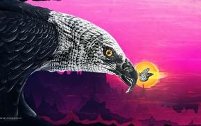 Картинка солнце, птица, бабочка, орёл, desktopography