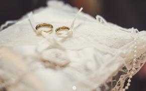 Картинка кольца, два, свадьба, подушечка, помолвка