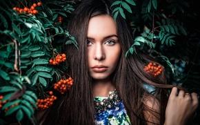 Картинка девушка, ягоды, портрет, губки, прелесть, рябина