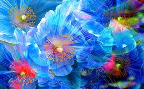 Картинка линии, цветы, краски, лепестки