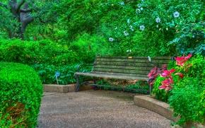 Картинка деревья, цветы, парк, hdr, кусты, скамья