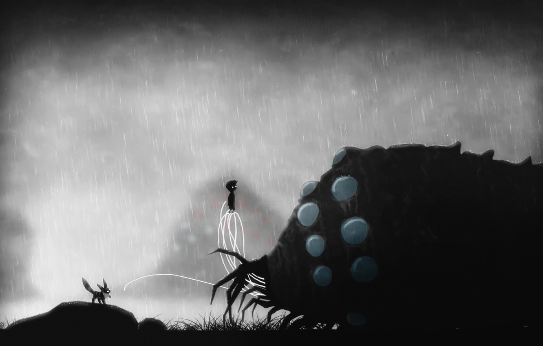 Обои limbo. мальчик, ночь, дождь. Разное foto 18