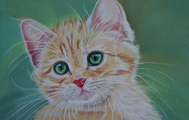 можно картинки рыжего кота с зелеными глазами мультяшного важный день