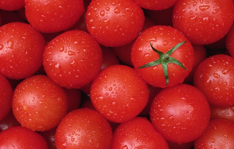 Обои makro, помидоры, еда, овощи, капли, стол. Еда foto 15