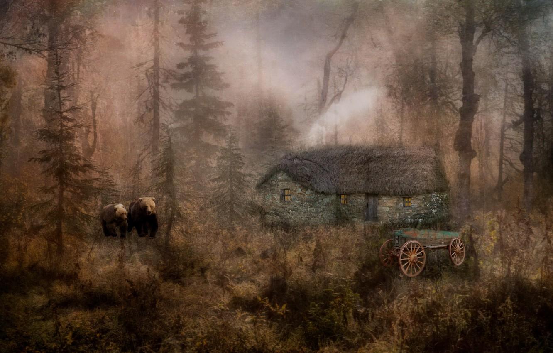 Фото обои природа, дом, стиль, медведи