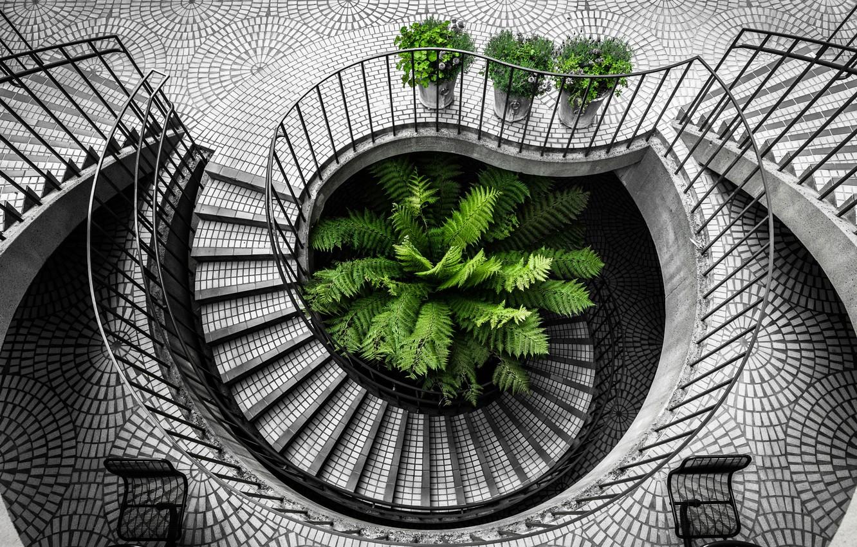 Фото обои city, california, san francisco, black and white, staircase, architecture, travel, stair, Kevin Huan, embarcadero, urban …