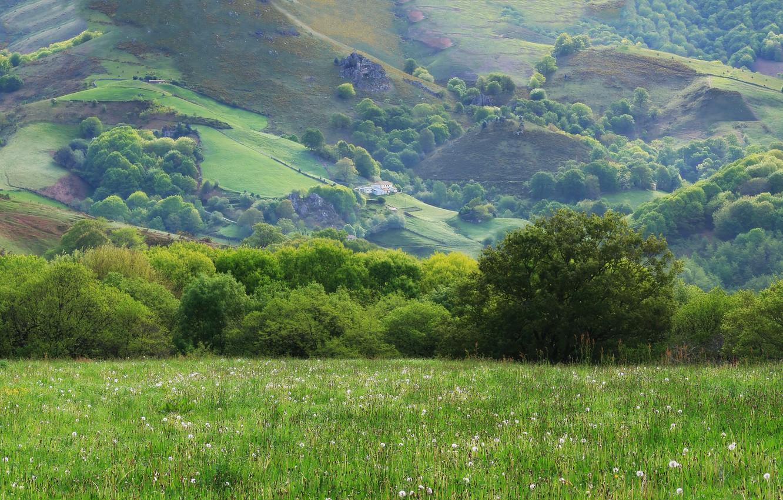 Фото обои солнце, деревья, дом, холмы, Поле, Горы, Трава