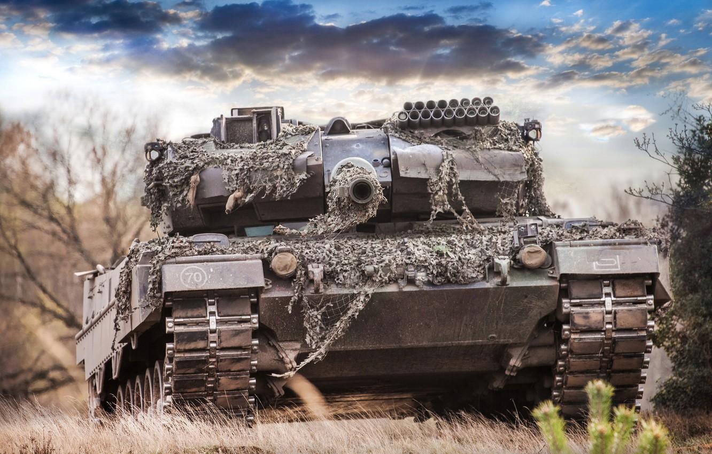 Фото обои лес, небо, дуло, танк, боевой, Leopard 2A6M