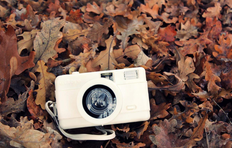 Фото обои осень, белый, листья, камера, фотоаппарат