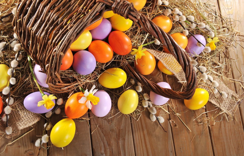 Фото обои яйца, весна, Пасха, happy, wood, верба, spring, Easter, eggs, holiday