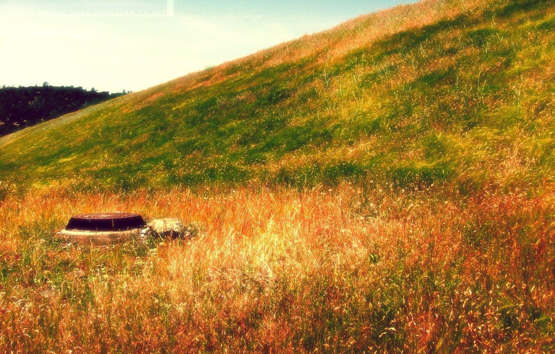 Фото обои осень, яркие краски, пейзаж, желтая трава, природа, стиль, ландшафт, ржавая крышка люка, зеленая трава