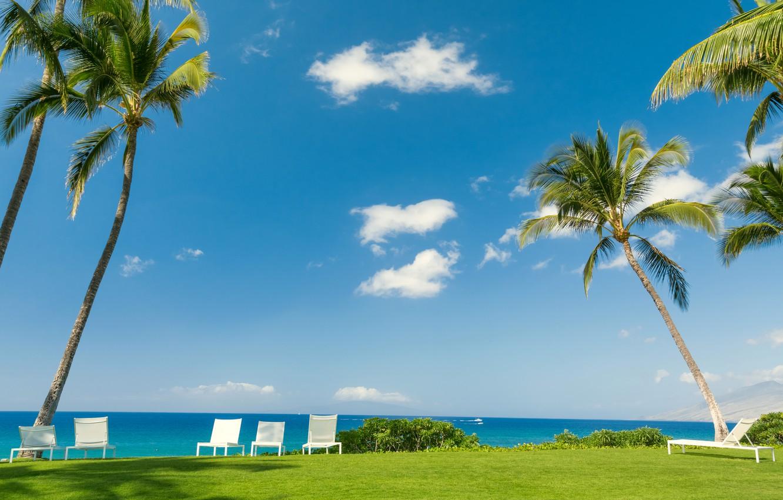 Фото обои море, зелень, небо, трава, солнце, облака, тропики, пальмы, газон, отдых, берег, стулья, горизонт, кусты, лежаки, …