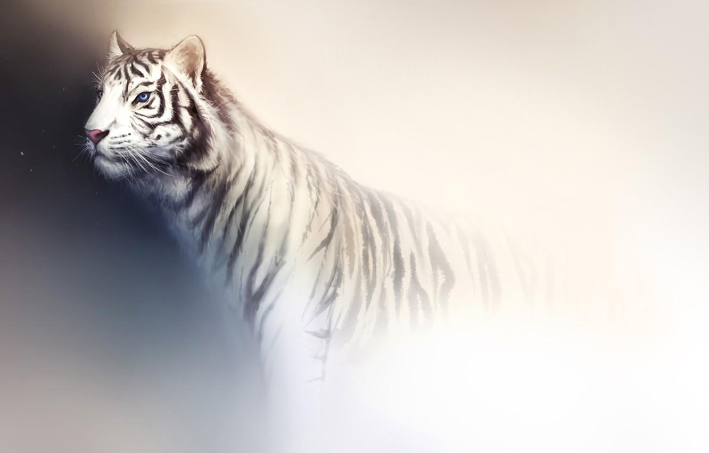 Фото обои белый, свет, тигр, фон, хищник, арт, дикая кошка