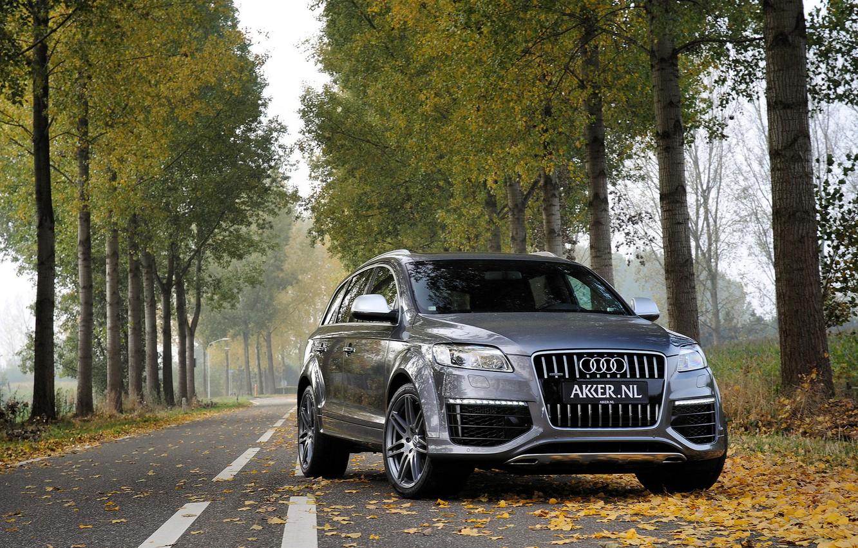 Фото обои осень, лес, листья, деревья, серый, Audi, Ауди, джип, металлик, grey, jeep, metallic