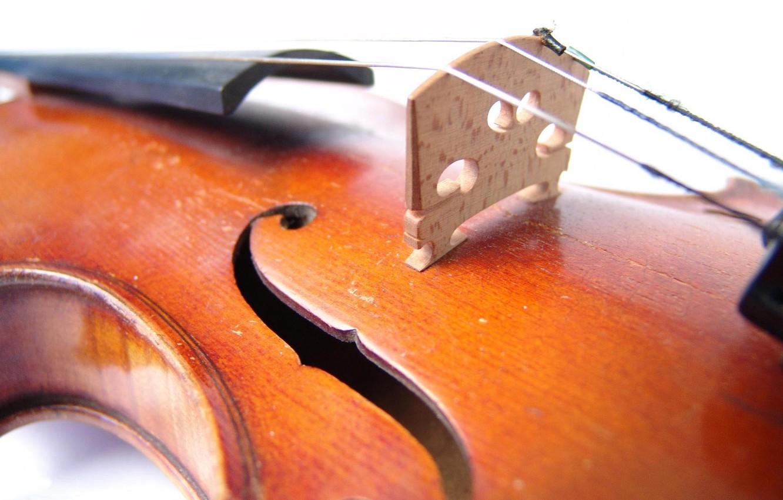 Фото обои музыка, жёлтый, скрипка