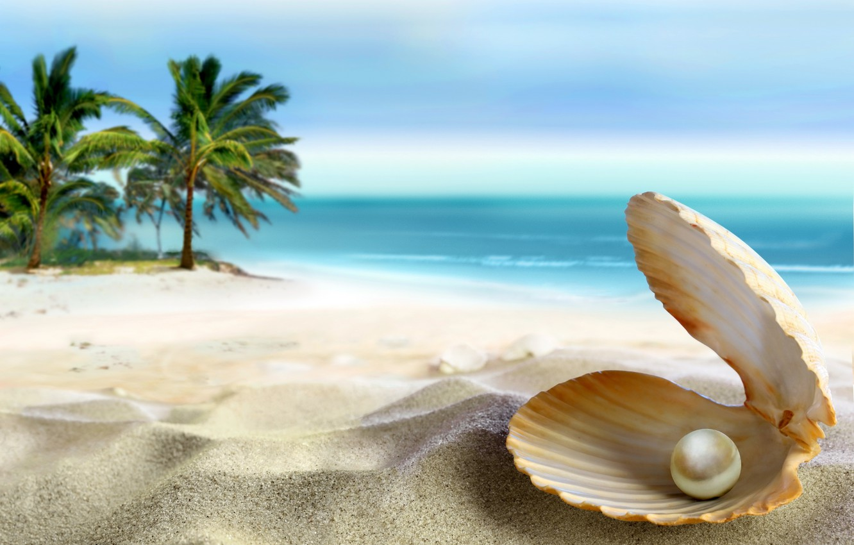 Фото обои песок, море, пляж, солнце, тропики, океан, ракушка, summer, beach, sea, ocean, coast, blue, sand, paradise, …
