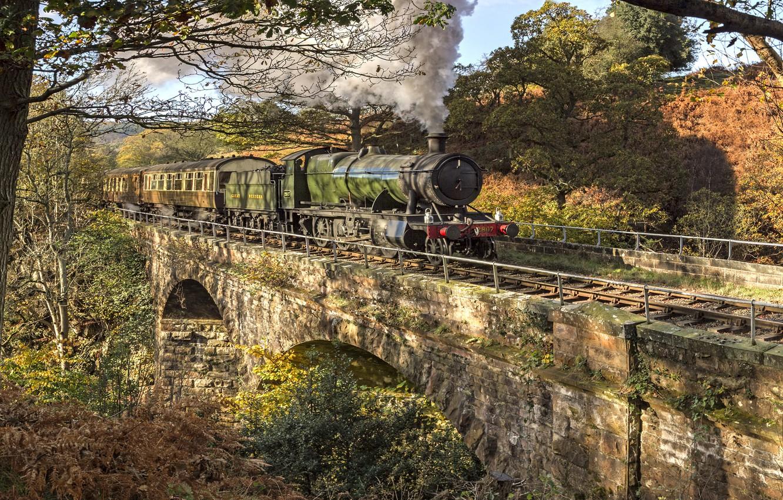 Фото обои мост, природа, паровоз